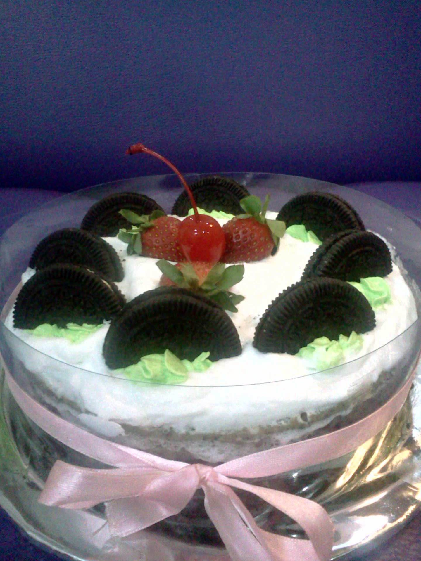 Unbaked-cheese-cake-13